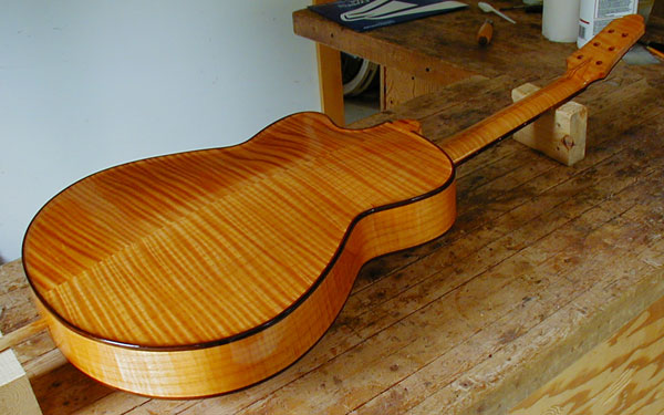 Small Archtop Back